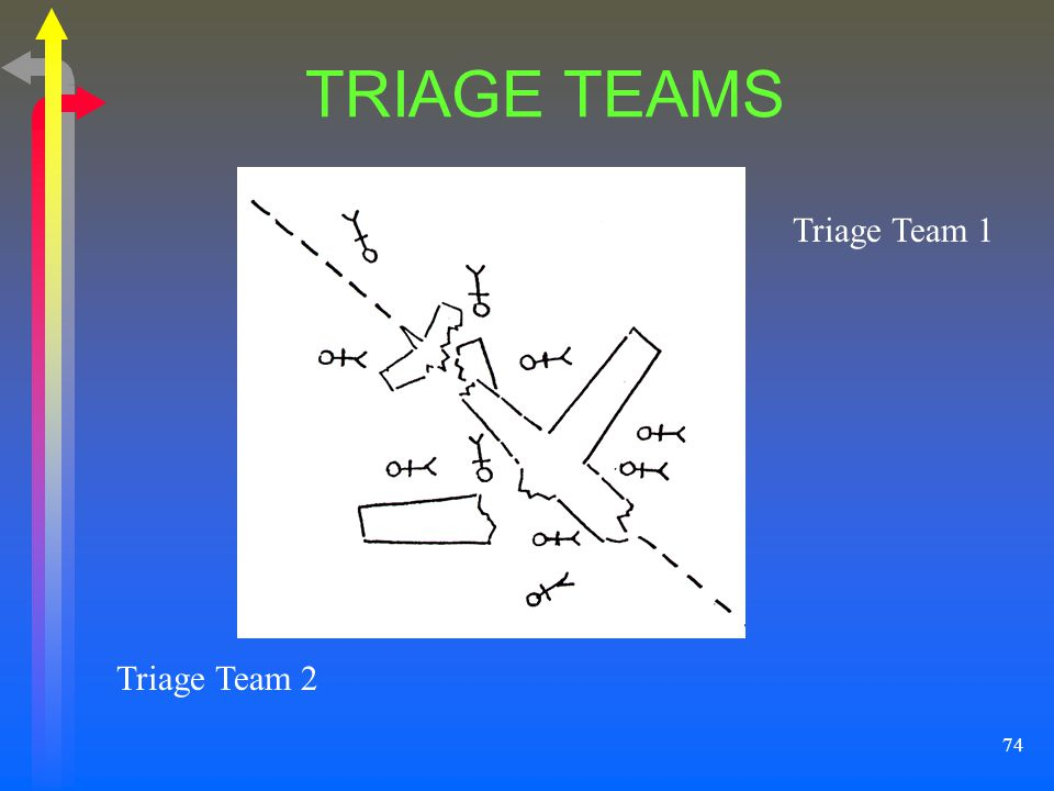 TRIAGE TEAMS Triage Team 1 Triage Team 2