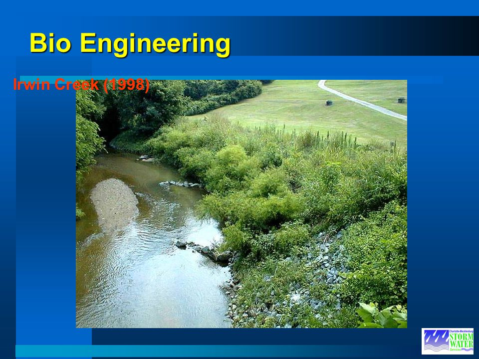 Bio Engineering Irwin Creek (1998)