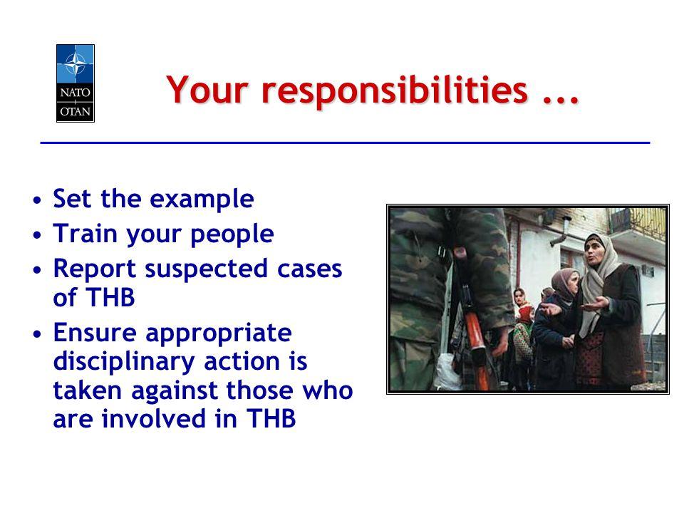 Your responsibilities ...
