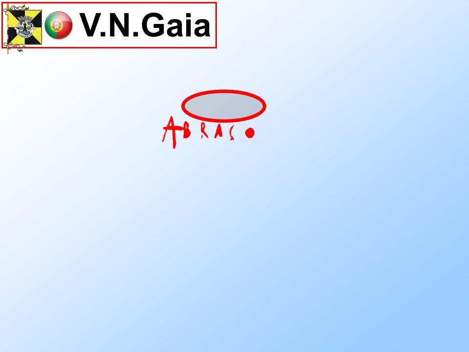 V.N.Gaia