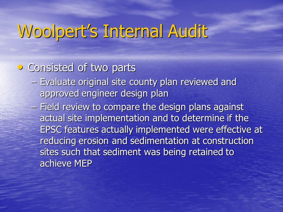 Woolpert's Internal Audit