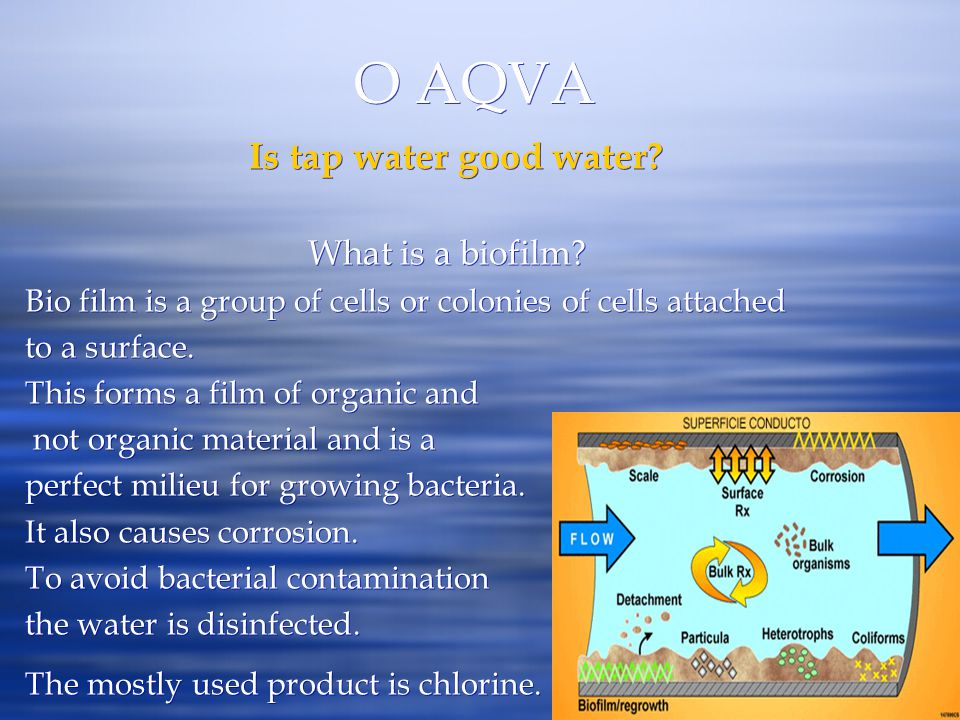 O AQVA Is tap water good water What is a biofilm