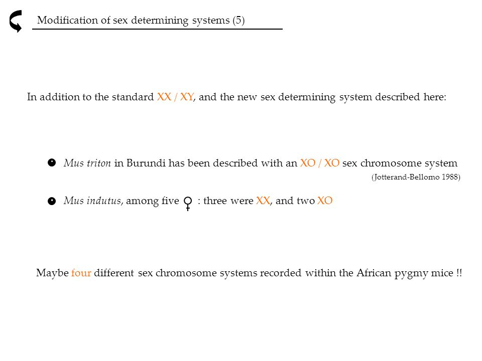 Modification of sex determining systems (5)