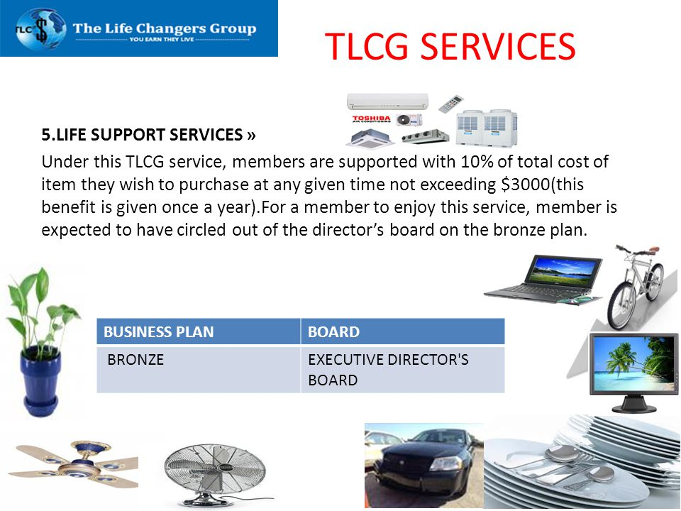 TLCG SERVICES 5.LIFE SUPPORT SERVICES »