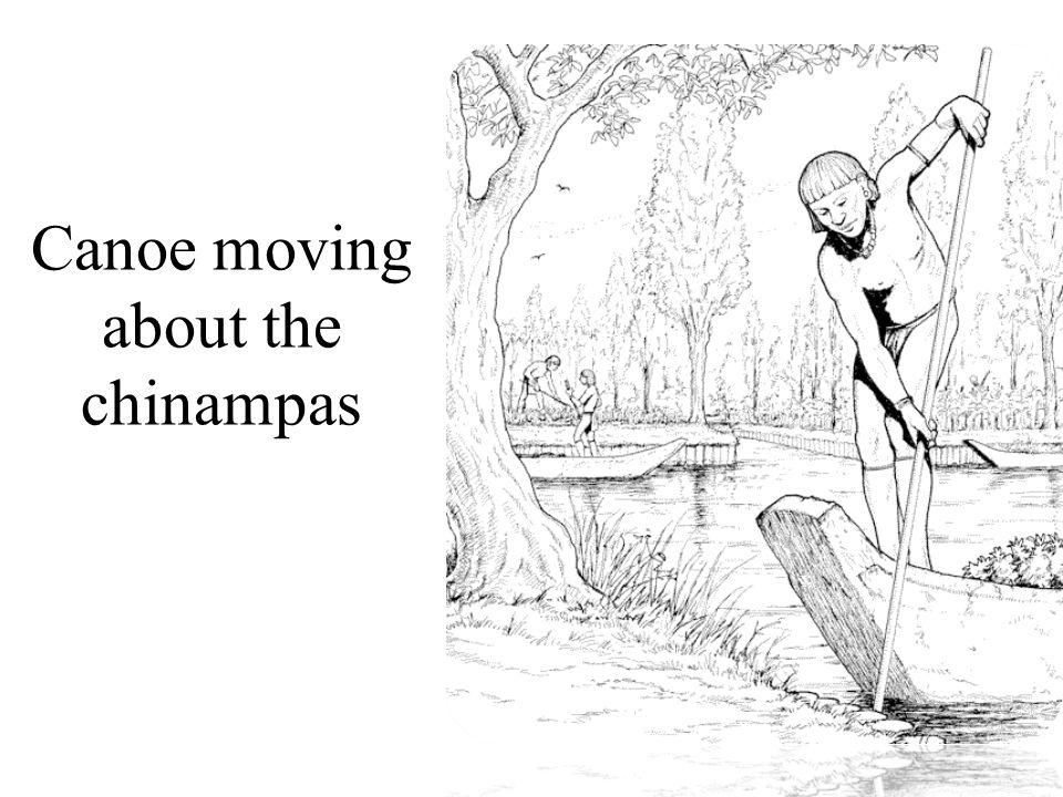 Canoe moving about the chinampas