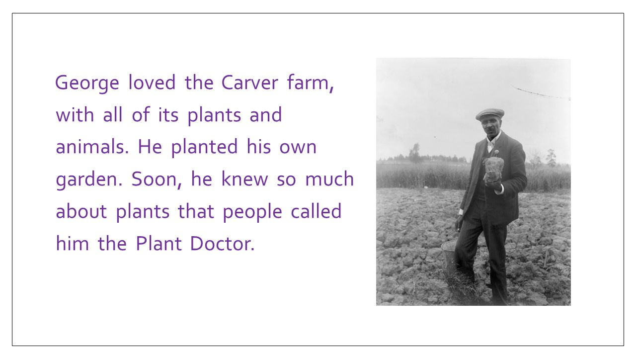George loved the Carver farm, with all of its plants and animals