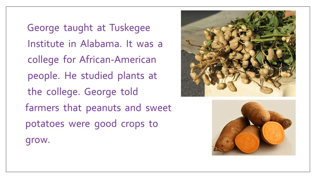George taught at Tuskegee Institute in Alabama