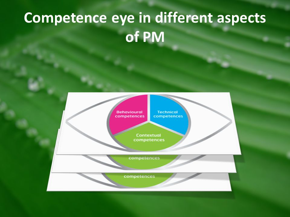 Competence eye in different aspects of PM