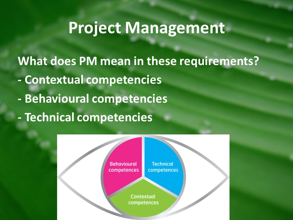 Project Management What does PM mean in these requirements - Contextual competencies - Behavioural competencies - Technical competencies