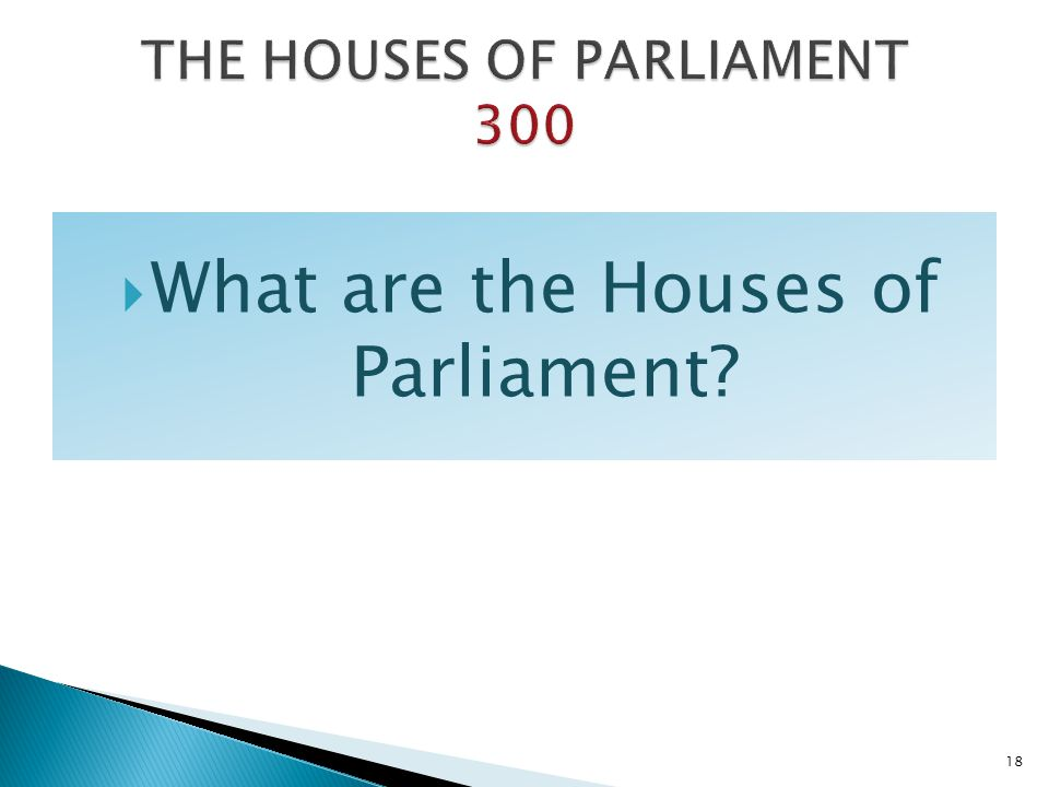 THE HOUSES OF PARLIAMENT 300