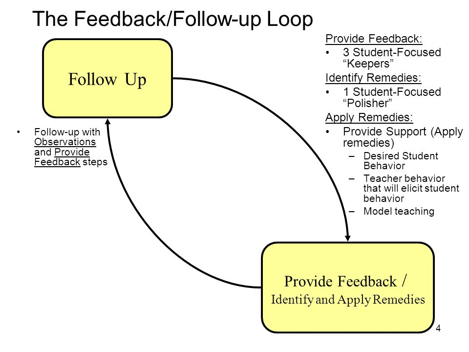 The Feedback/Follow-up Loop