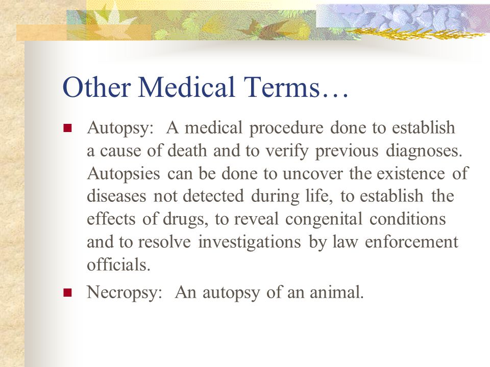 Other Medical Terms…