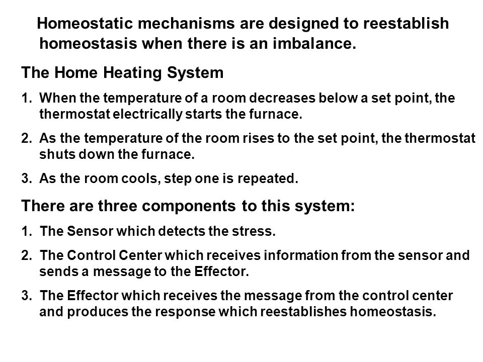 Homeostatic mechanisms are designed to reestablish homeostasis when there is an imbalance.