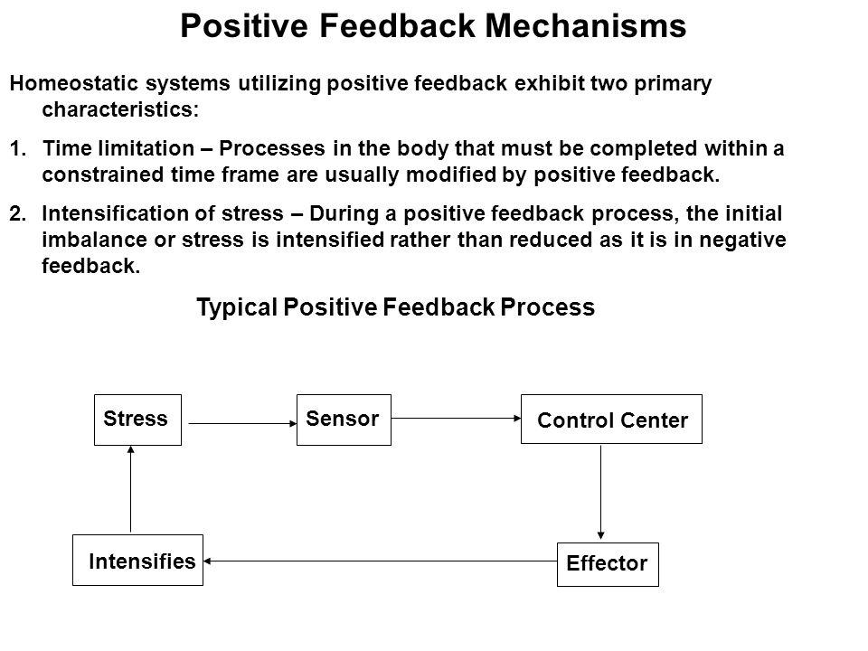 Positive Feedback Mechanisms