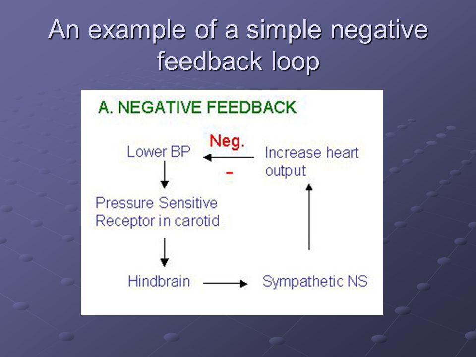 Feedback mechanisms, hormones and the endocrine system ...
