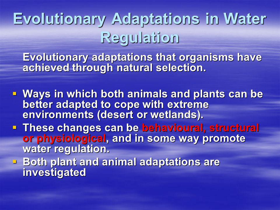 Evolutionary Adaptations in Water Regulation
