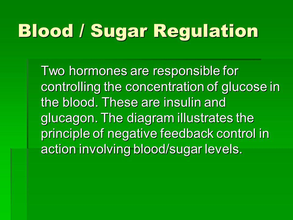 Blood / Sugar Regulation