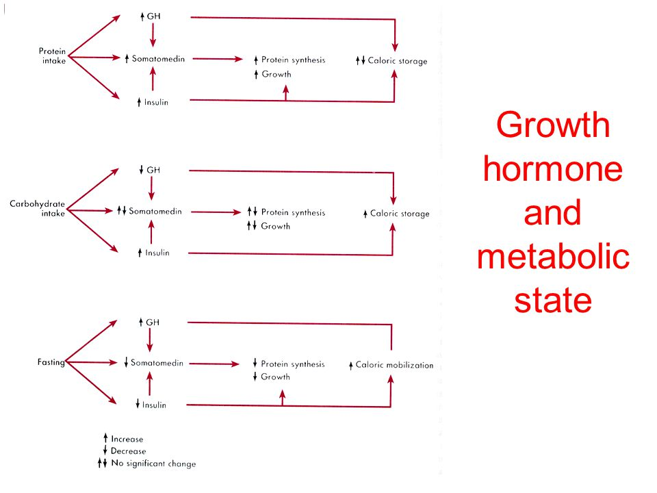 Growth hormone and metabolic state