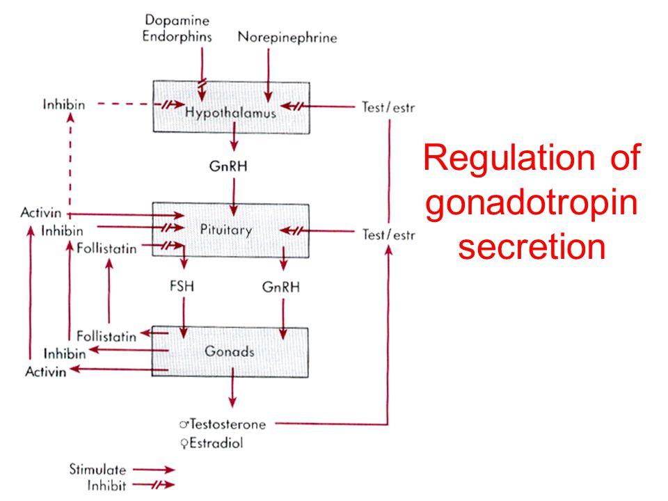 Regulation of gonadotropin secretion