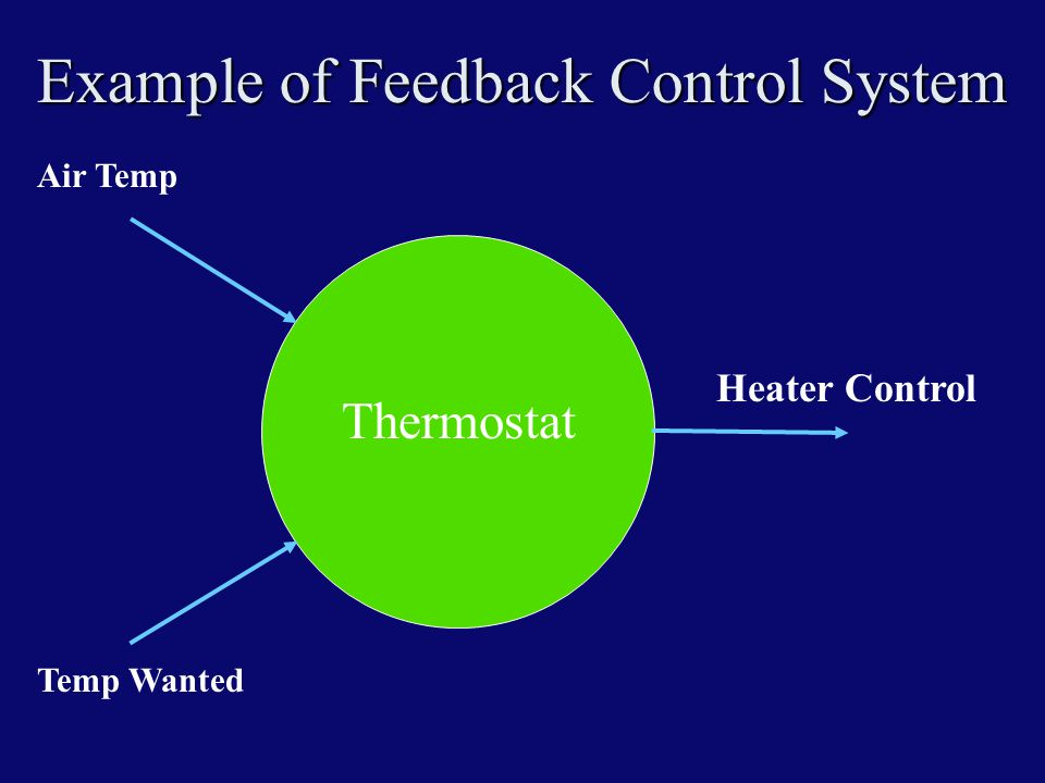 Example of Feedback Control System