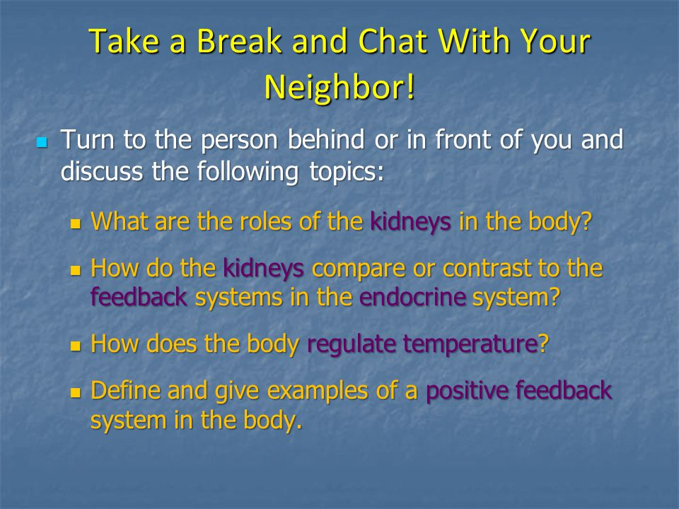 Take a Break and Chat With Your Neighbor!