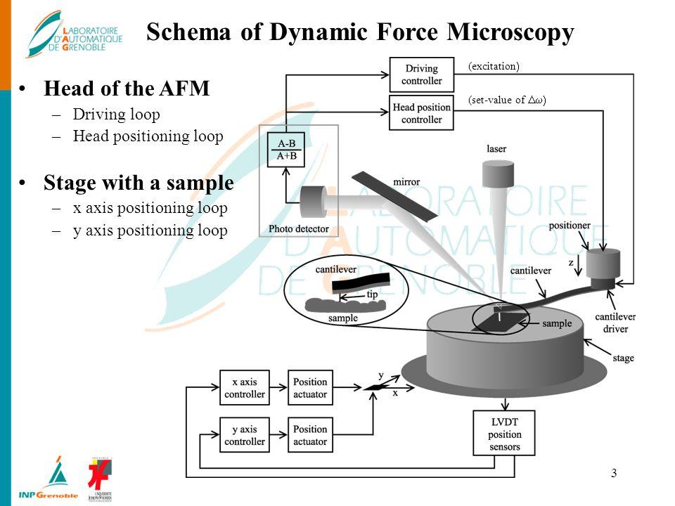 Schema of Dynamic Force Microscopy