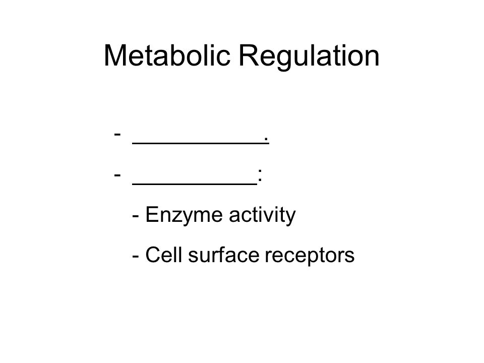 Metabolic Regulation . : - Enzyme activity - Cell surface receptors
