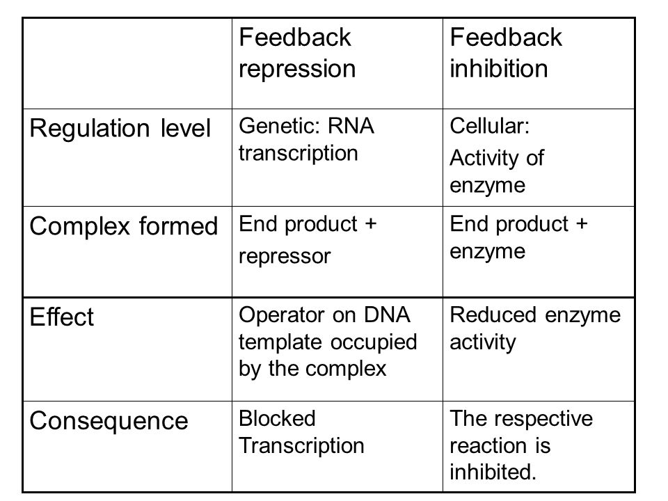 Feedback inhibition Feedback repression Regulation level