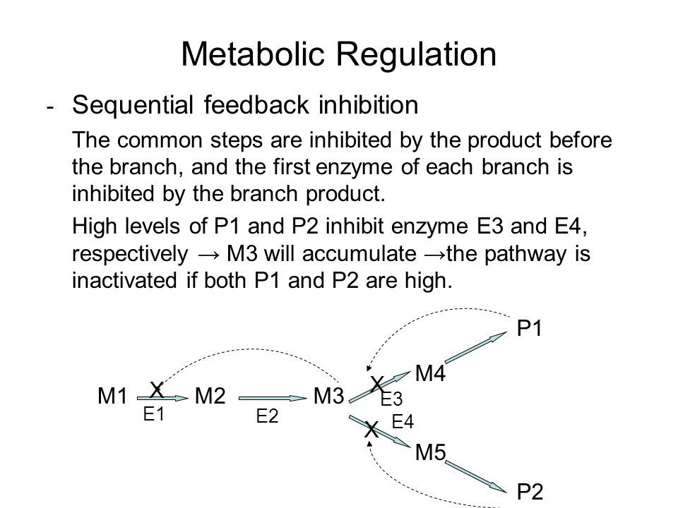 Metabolic Regulation - Sequential feedback inhibition