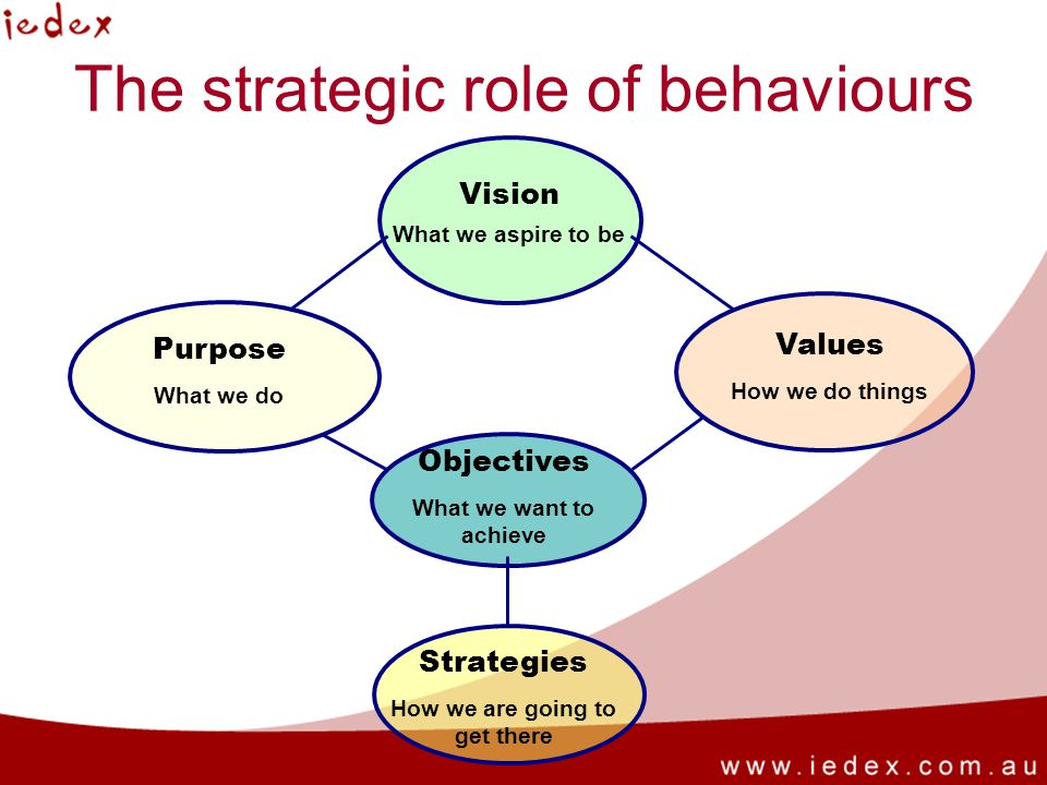 The strategic role of behaviours