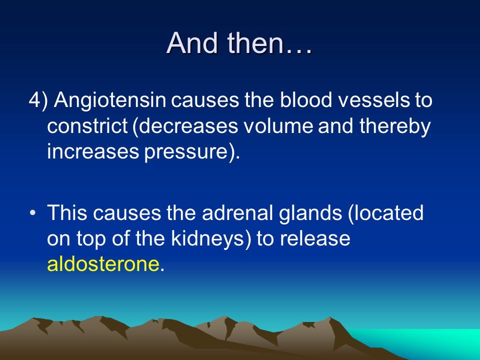 And then… 4) Angiotensin causes the blood vessels to constrict (decreases volume and thereby increases pressure).