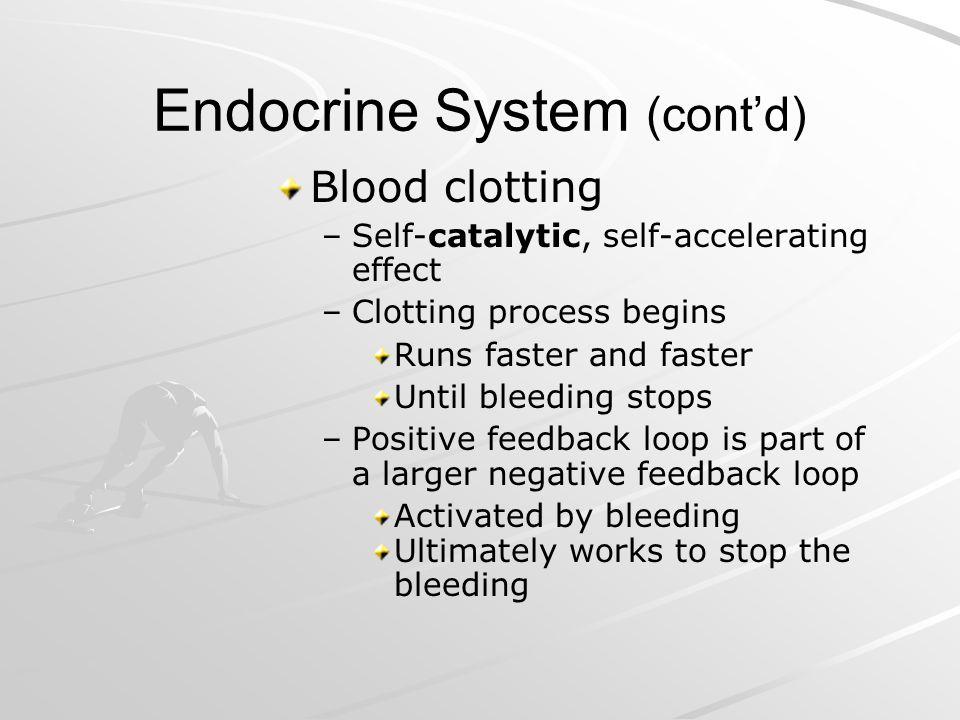 Endocrine System (cont'd)