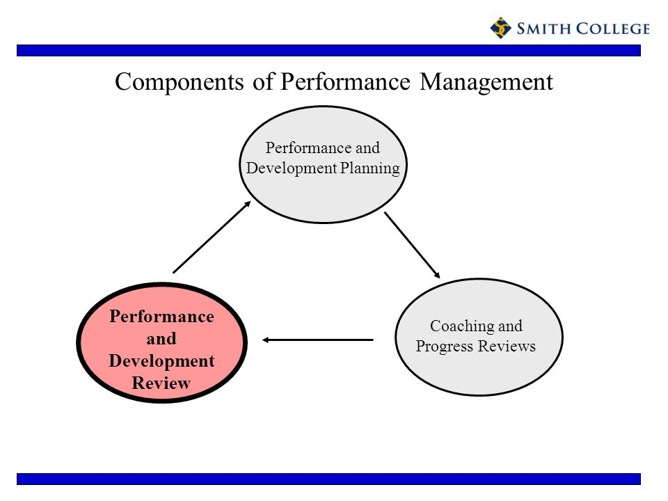 Components of Performance Management