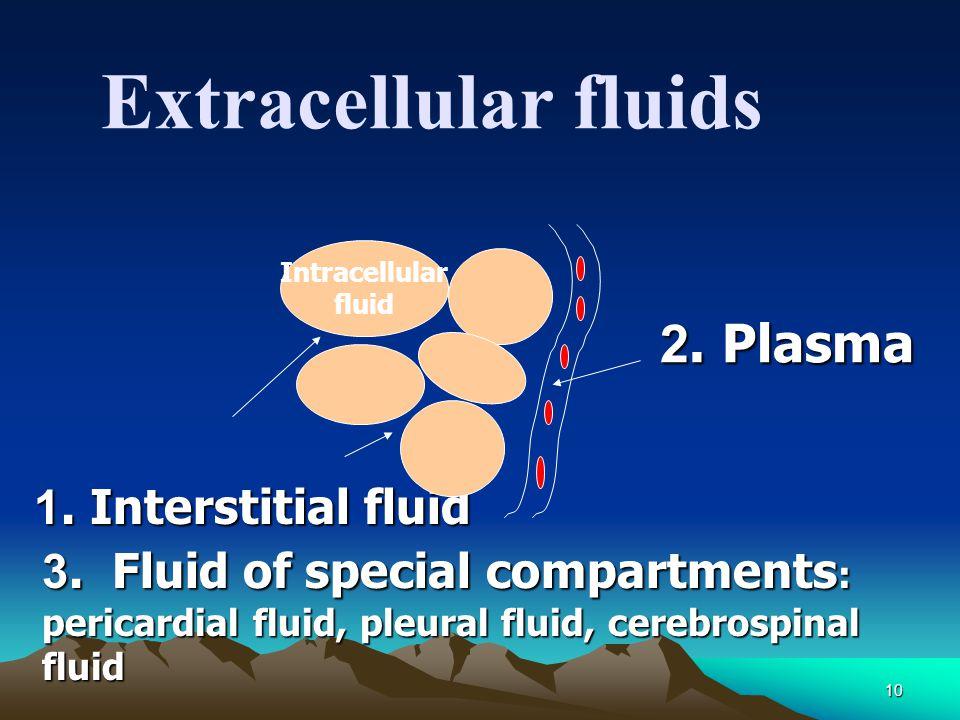 Extracellular fluids 1. Interstitial fluid