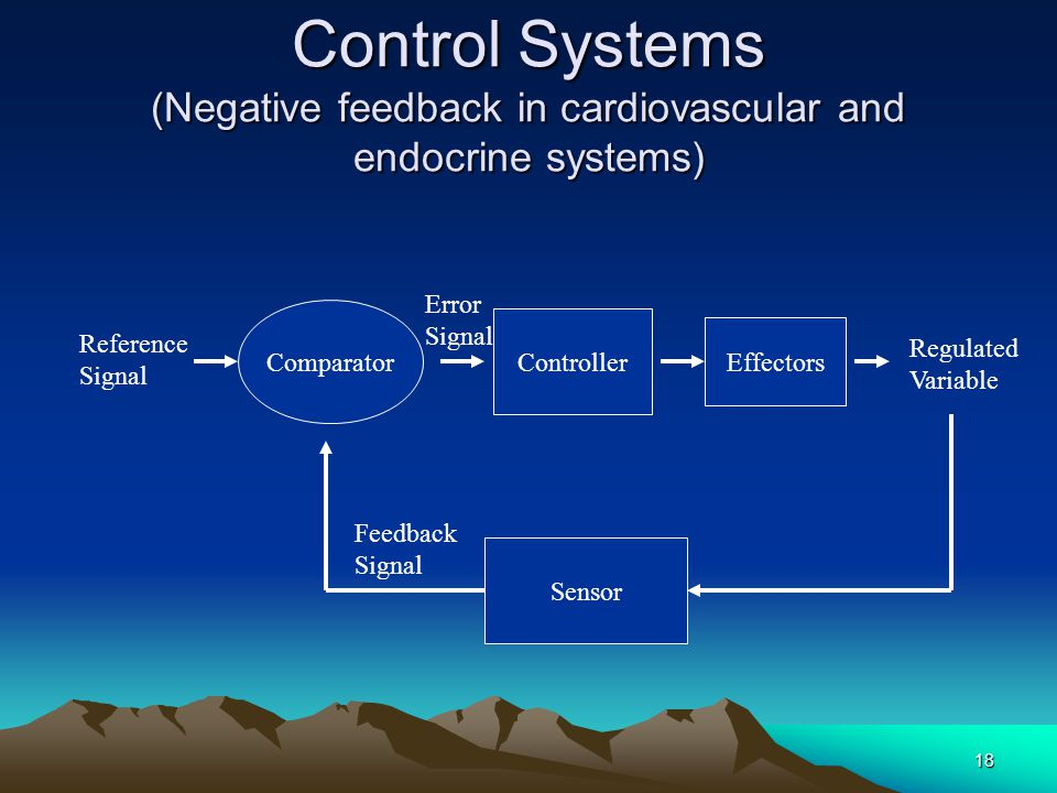 Control Systems (Negative feedback in cardiovascular and endocrine systems)