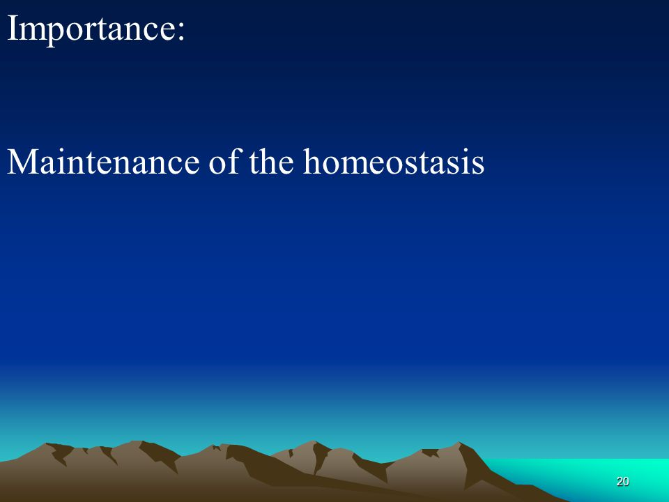 Importance: Maintenance of the homeostasis