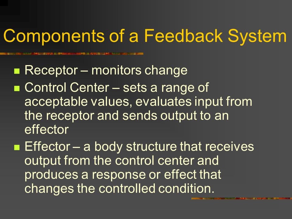 Components of a Feedback System