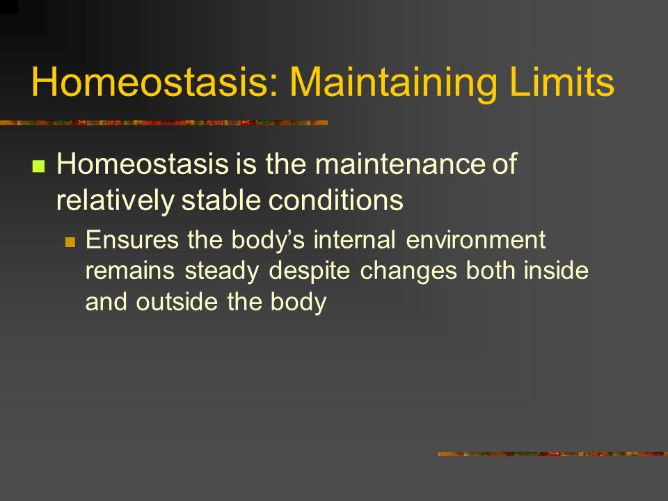 Homeostasis: Maintaining Limits
