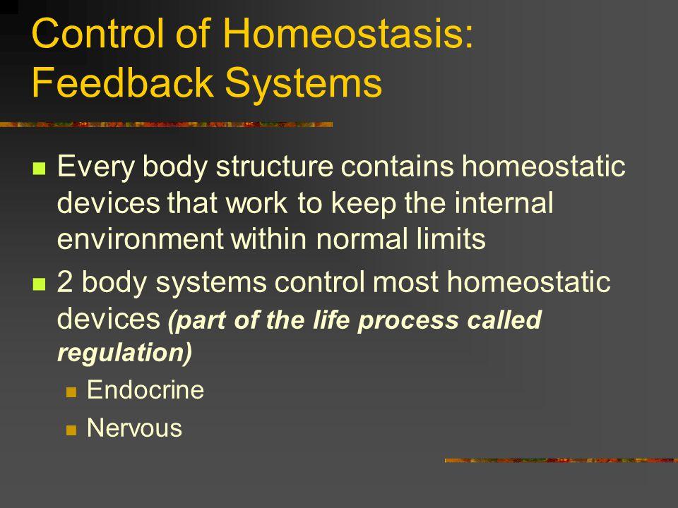 Control of Homeostasis: Feedback Systems