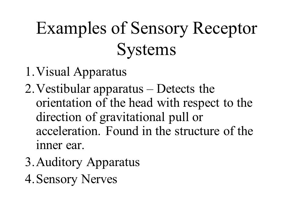 Examples of Sensory Receptor Systems