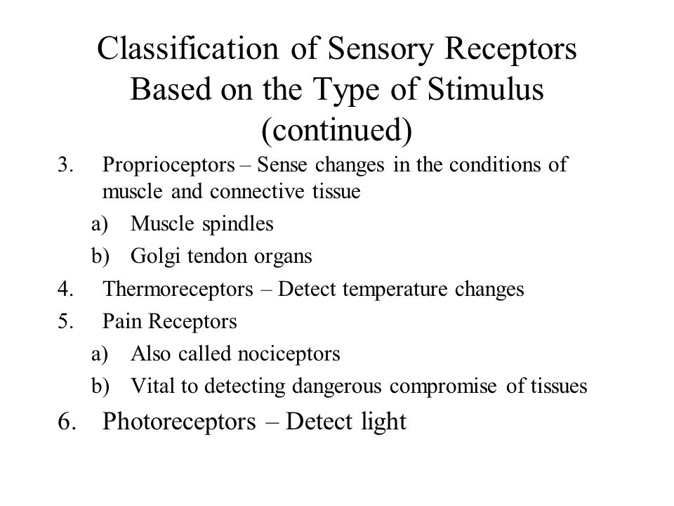Classification of Sensory Receptors Based on the Type of Stimulus (continued)