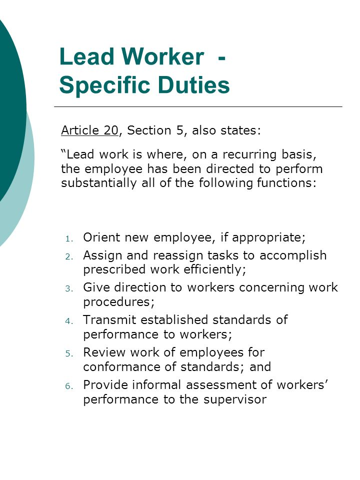 Lead Worker - Specific Duties