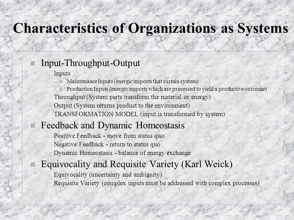 Characteristics of Organizations as Systems