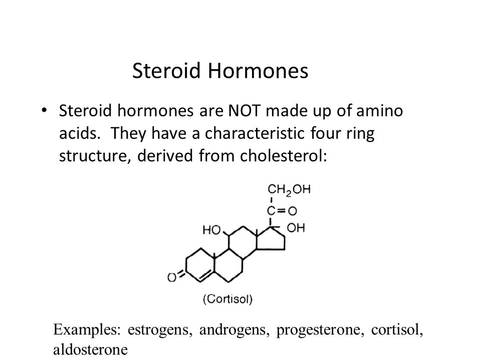 Steroid Hormones Steroid hormones are NOT made up of amino acids. They have a characteristic four ring structure, derived from cholesterol: