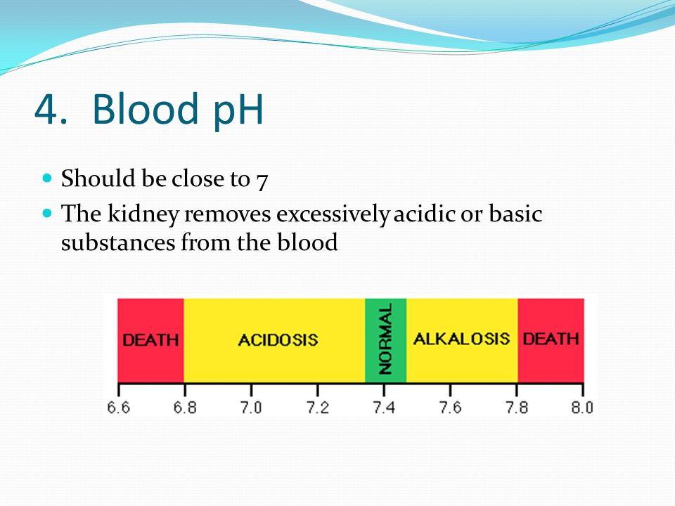 4. Blood pH Should be close to 7
