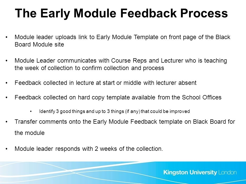 The Early Module Feedback Process