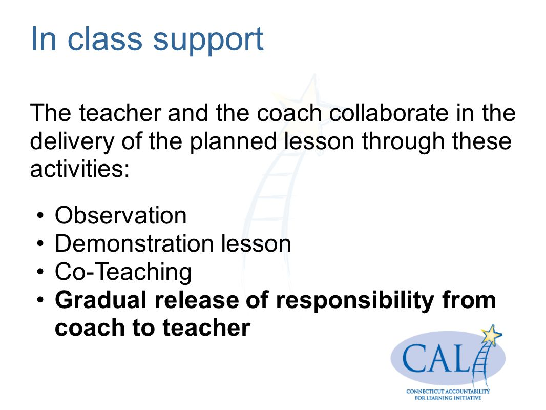 In class support The teacher and the coach collaborate in the delivery of the planned lesson through these activities: