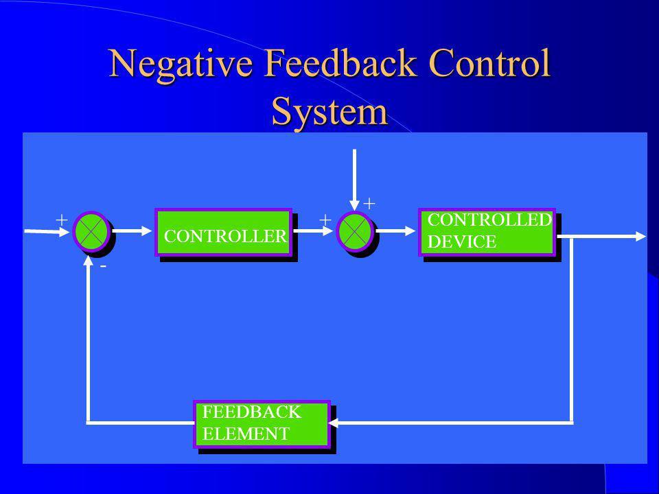Negative Feedback Control System