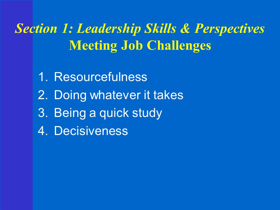 Section 1: Leadership Skills & Perspectives Meeting Job Challenges
