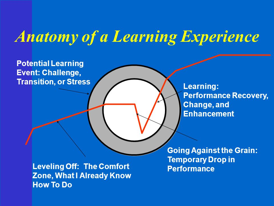 Anatomy of a Learning Experience